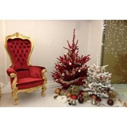 Location fauteuil trône velours rouge