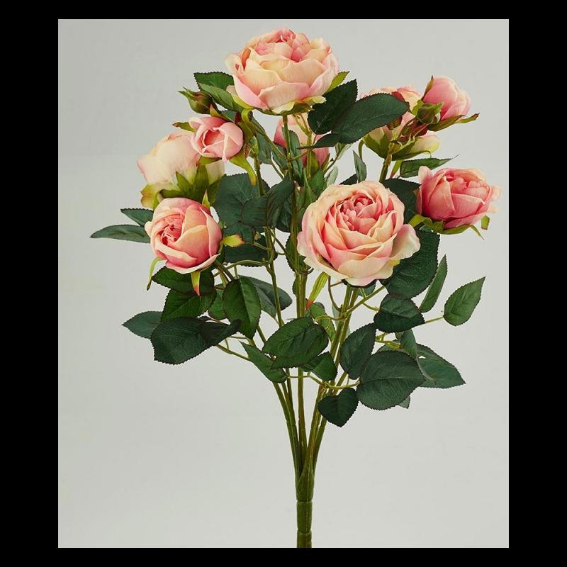 pour une d coration fleurie pensez ces roses. Black Bedroom Furniture Sets. Home Design Ideas