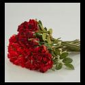 Roses rouges à louer
