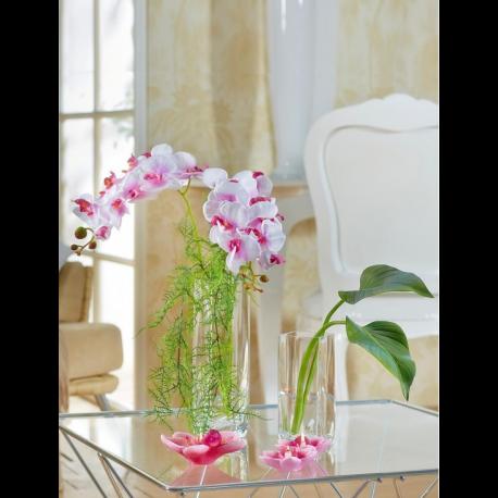 Orchidées artificielles à louer