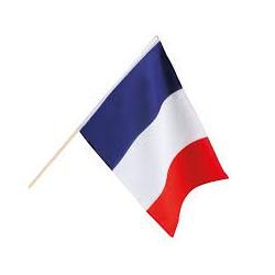 Drapeau français sur tige