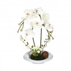 Orchidée artificielle blanche